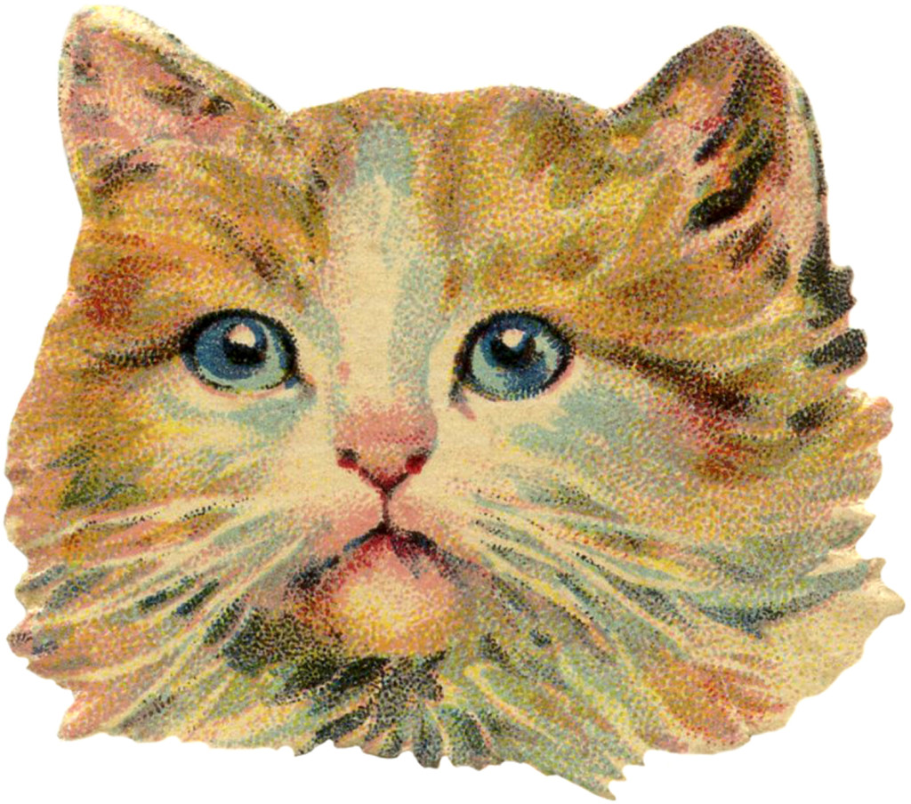 Vintage-Cat-Image-GraphicsFairy