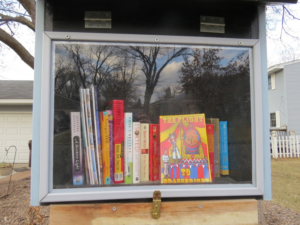 Richfield Minnesota Little Library