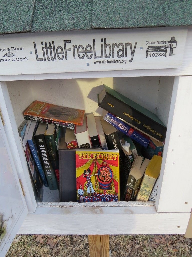 South Minneapolis Minnesota Little Library